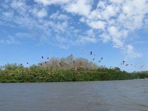Ecoturismo en Cuba