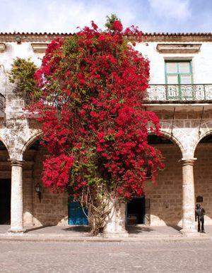 Palacio del Conde de Lombillo