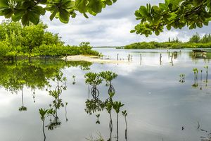 Granja de las Tortugas, Cayo Largo