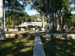 Piantagione Buenavista