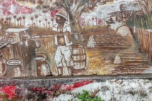 Central Australia, Cuba