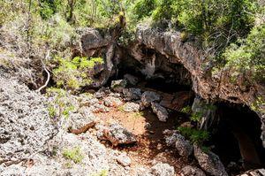 Desembarco del Granma National Park
