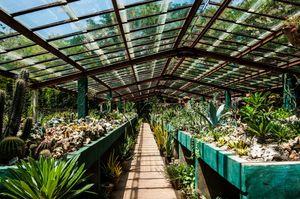 Jardín Botánico de Cupaynicú