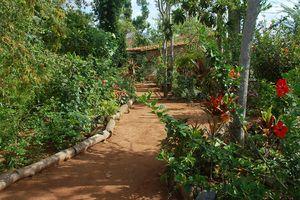 Jardín de la Caridad, Viñales