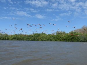 Lagune de Guanaroca