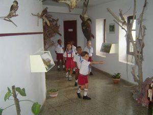 Musée d'Histoire Naturelle de Nueva Gerona