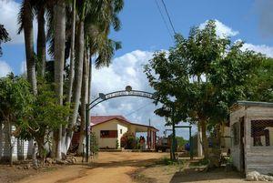 Plantation de Tabac Alejandro Robaina