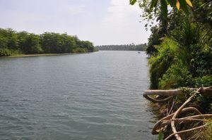 Río Toa
